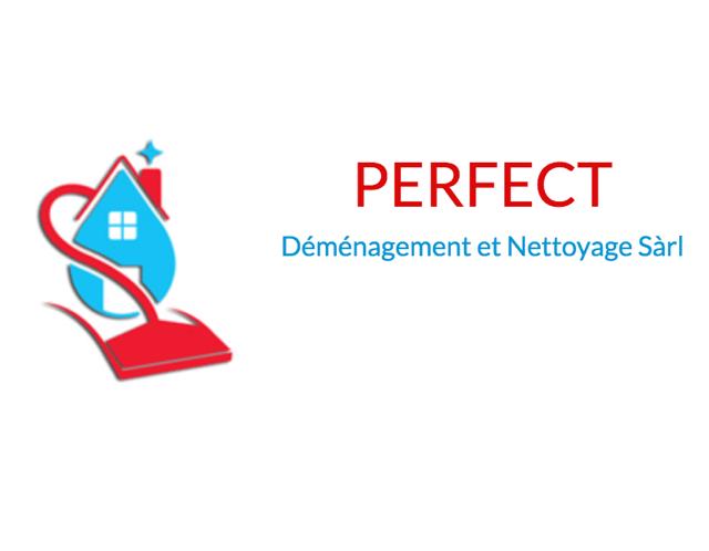 Perfect demenagement logo